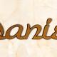 articolo-15-daniele-scritta-in-bronzo