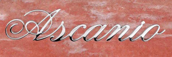 articolo-19-ascanio-scritta-in-acciaio-inox.