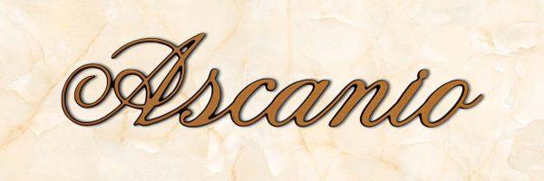 articolo-19-ascanio-scritta-in-bronzo