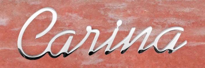 articolo-20-carina-scritta-in-acciaio-inox