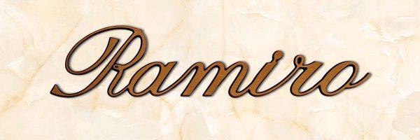articolo-21-ramiro-scritta-in-bronzo