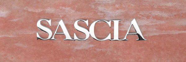 articolo-44-sascia-scritta-in-acciaio-inox