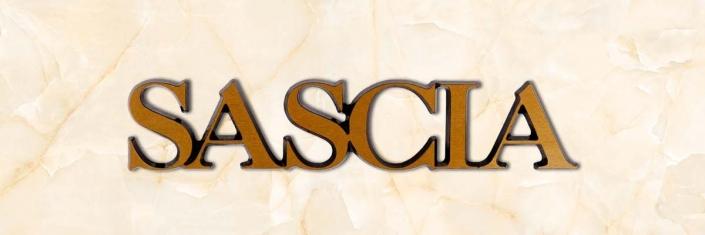 articolo-44-sascia-scritta-in-bronzo
