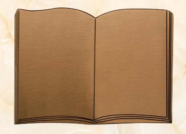 articolo-L1-BR-libro in bronzo