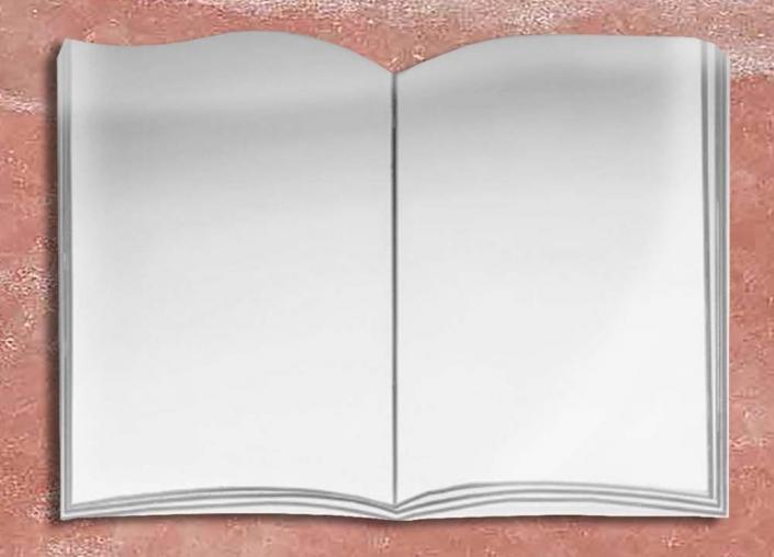 articolo-L1-IN-libro in acciaio inox